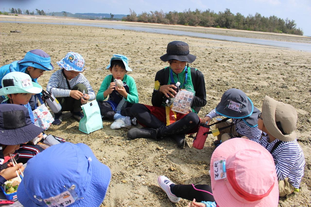 ネコクラブABC合同-06◆秋の干潟で収穫まつり(10/17)沖縄随一の干潟、泡瀬干潟で丸一日潮干狩りにチャレンジ。貝もカニもいっぱいで、お腹いっぱいになりました!_d0363878_00102770.jpeg