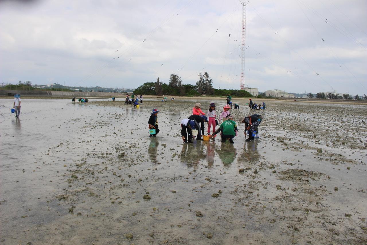 ネコクラブABC合同-06◆秋の干潟で収穫まつり(10/17)沖縄随一の干潟、泡瀬干潟で丸一日潮干狩りにチャレンジ。貝もカニもいっぱいで、お腹いっぱいになりました!_d0363878_00102801.jpeg