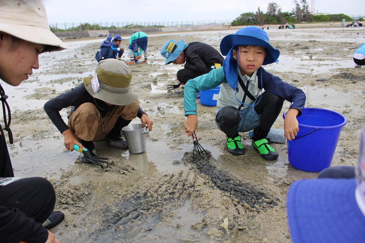 ネコクラブABC合同-06◆秋の干潟で収穫まつり(10/17)沖縄随一の干潟、泡瀬干潟で丸一日潮干狩りにチャレンジ。貝もカニもいっぱいで、お腹いっぱいになりました!_d0363878_00102833.jpeg