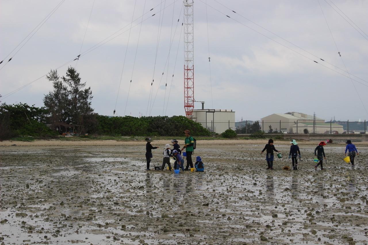 ネコクラブABC合同-06◆秋の干潟で収穫まつり(10/17)沖縄随一の干潟、泡瀬干潟で丸一日潮干狩りにチャレンジ。貝もカニもいっぱいで、お腹いっぱいになりました!_d0363878_00102867.jpeg