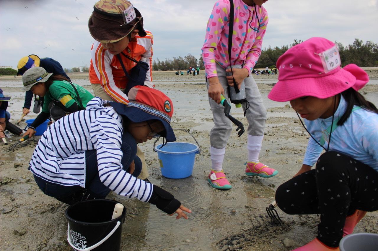 ネコクラブABC合同-06◆秋の干潟で収穫まつり(10/17)沖縄随一の干潟、泡瀬干潟で丸一日潮干狩りにチャレンジ。貝もカニもいっぱいで、お腹いっぱいになりました!_d0363878_00111226.jpeg