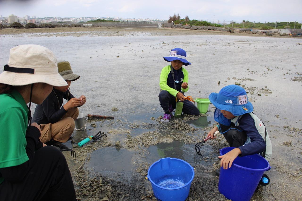 ネコクラブABC合同-06◆秋の干潟で収穫まつり(10/17)沖縄随一の干潟、泡瀬干潟で丸一日潮干狩りにチャレンジ。貝もカニもいっぱいで、お腹いっぱいになりました!_d0363878_00111278.jpeg