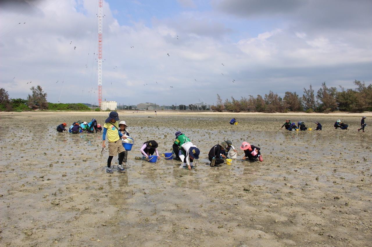 ネコクラブABC合同-06◆秋の干潟で収穫まつり(10/17)沖縄随一の干潟、泡瀬干潟で丸一日潮干狩りにチャレンジ。貝もカニもいっぱいで、お腹いっぱいになりました!_d0363878_00111293.jpeg