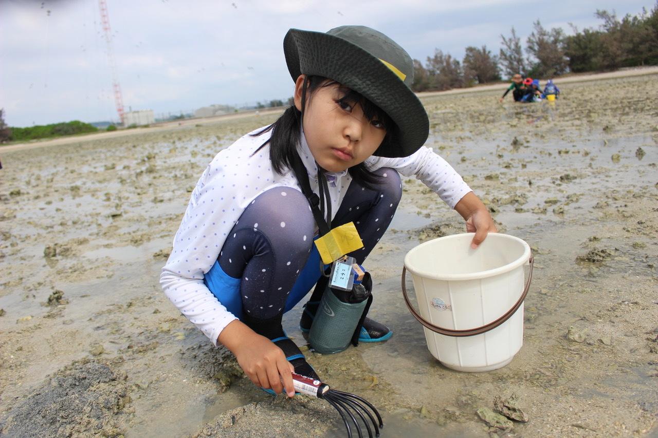 ネコクラブABC合同-06◆秋の干潟で収穫まつり(10/17)沖縄随一の干潟、泡瀬干潟で丸一日潮干狩りにチャレンジ。貝もカニもいっぱいで、お腹いっぱいになりました!_d0363878_00111899.jpeg