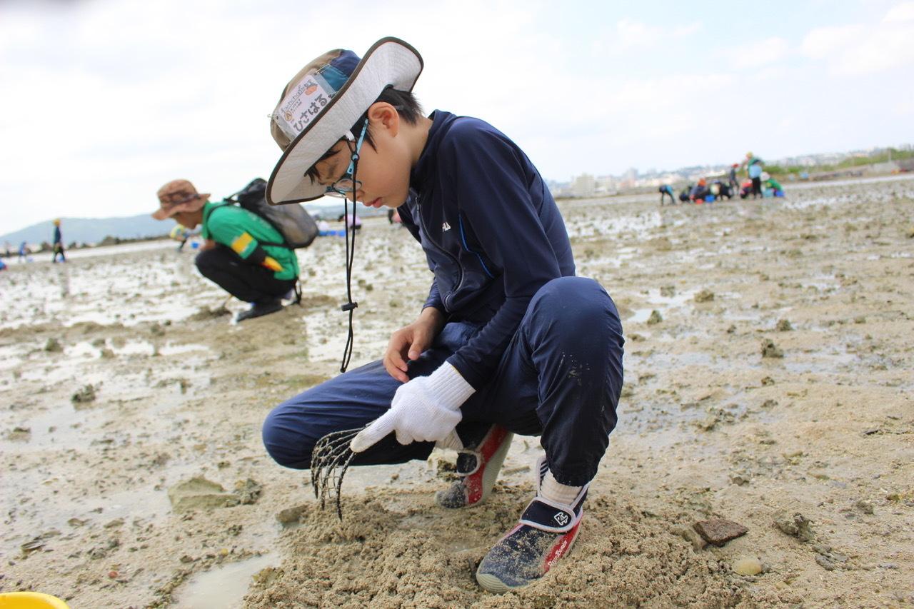ネコクラブABC合同-06◆秋の干潟で収穫まつり(10/17)沖縄随一の干潟、泡瀬干潟で丸一日潮干狩りにチャレンジ。貝もカニもいっぱいで、お腹いっぱいになりました!_d0363878_00113419.jpeg