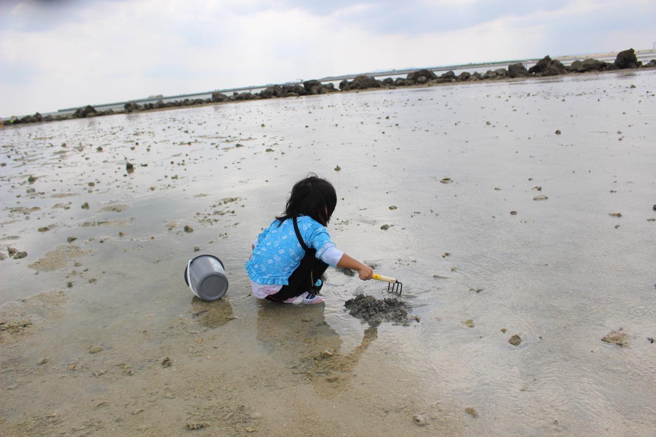 ネコクラブABC合同-06◆秋の干潟で収穫まつり(10/17)沖縄随一の干潟、泡瀬干潟で丸一日潮干狩りにチャレンジ。貝もカニもいっぱいで、お腹いっぱいになりました!_d0363878_00113453.jpeg