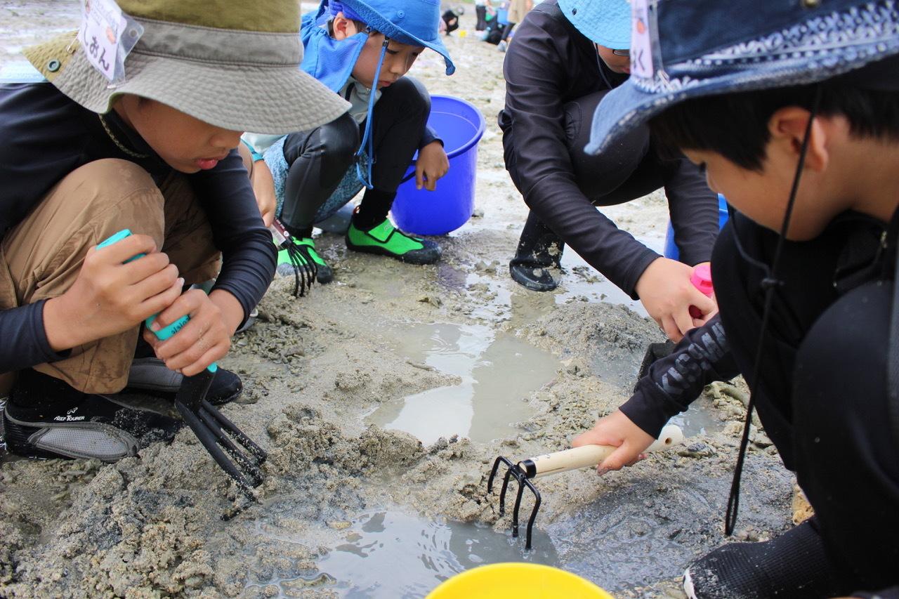 ネコクラブABC合同-06◆秋の干潟で収穫まつり(10/17)沖縄随一の干潟、泡瀬干潟で丸一日潮干狩りにチャレンジ。貝もカニもいっぱいで、お腹いっぱいになりました!_d0363878_00113474.jpeg