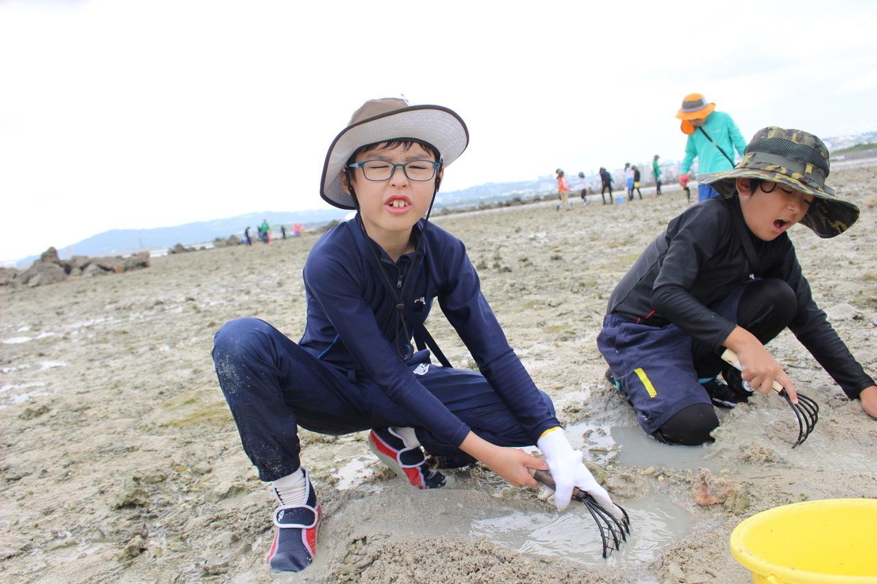 ネコクラブABC合同-06◆秋の干潟で収穫まつり(10/17)沖縄随一の干潟、泡瀬干潟で丸一日潮干狩りにチャレンジ。貝もカニもいっぱいで、お腹いっぱいになりました!_d0363878_00114709.jpeg