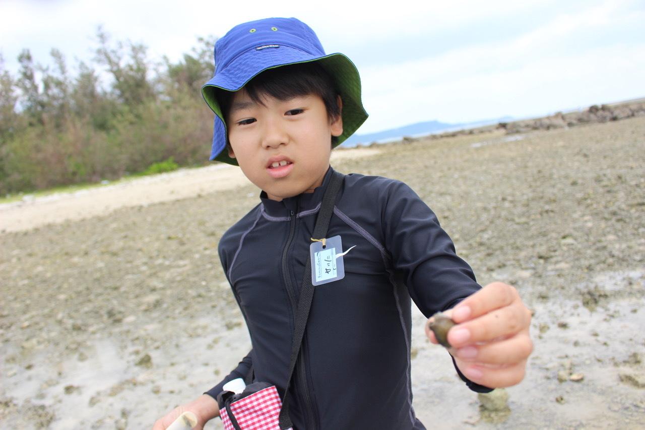 ネコクラブABC合同-06◆秋の干潟で収穫まつり(10/17)沖縄随一の干潟、泡瀬干潟で丸一日潮干狩りにチャレンジ。貝もカニもいっぱいで、お腹いっぱいになりました!_d0363878_00114762.jpeg