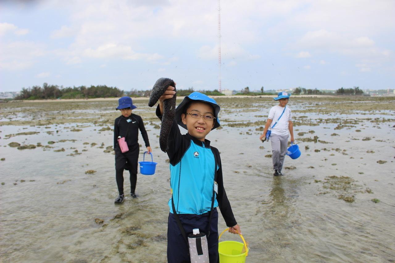 ネコクラブABC合同-06◆秋の干潟で収穫まつり(10/17)沖縄随一の干潟、泡瀬干潟で丸一日潮干狩りにチャレンジ。貝もカニもいっぱいで、お腹いっぱいになりました!_d0363878_00121830.jpeg