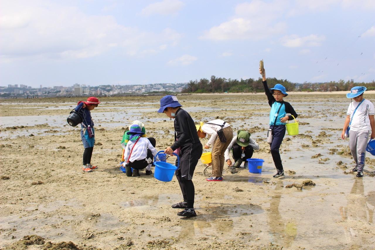 ネコクラブABC合同-06◆秋の干潟で収穫まつり(10/17)沖縄随一の干潟、泡瀬干潟で丸一日潮干狩りにチャレンジ。貝もカニもいっぱいで、お腹いっぱいになりました!_d0363878_00121836.jpeg