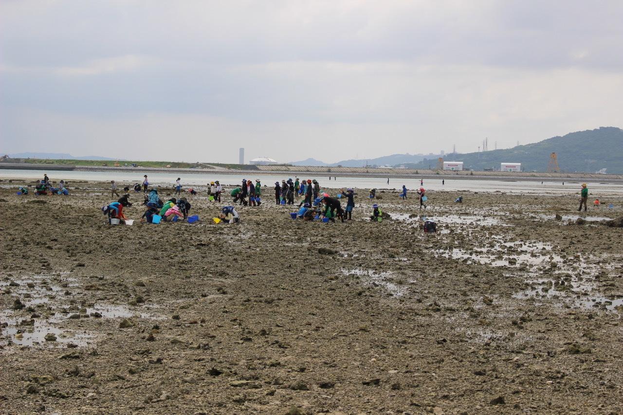 ネコクラブABC合同-06◆秋の干潟で収穫まつり(10/17)沖縄随一の干潟、泡瀬干潟で丸一日潮干狩りにチャレンジ。貝もカニもいっぱいで、お腹いっぱいになりました!_d0363878_00121879.jpeg