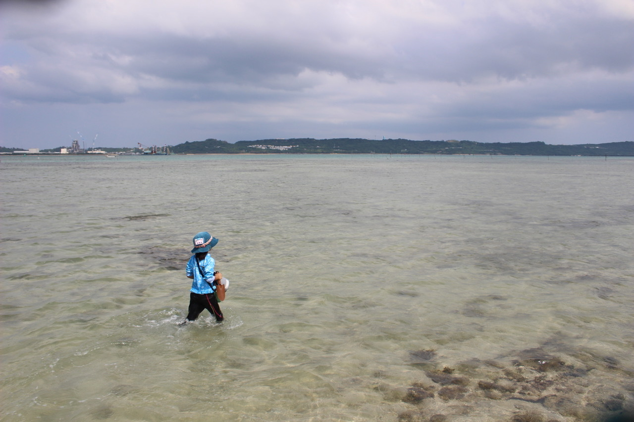 ネコクラブABC合同-06◆秋の干潟で収穫まつり(10/17)沖縄随一の干潟、泡瀬干潟で丸一日潮干狩りにチャレンジ。貝もカニもいっぱいで、お腹いっぱいになりました!_d0363878_00123257.jpeg