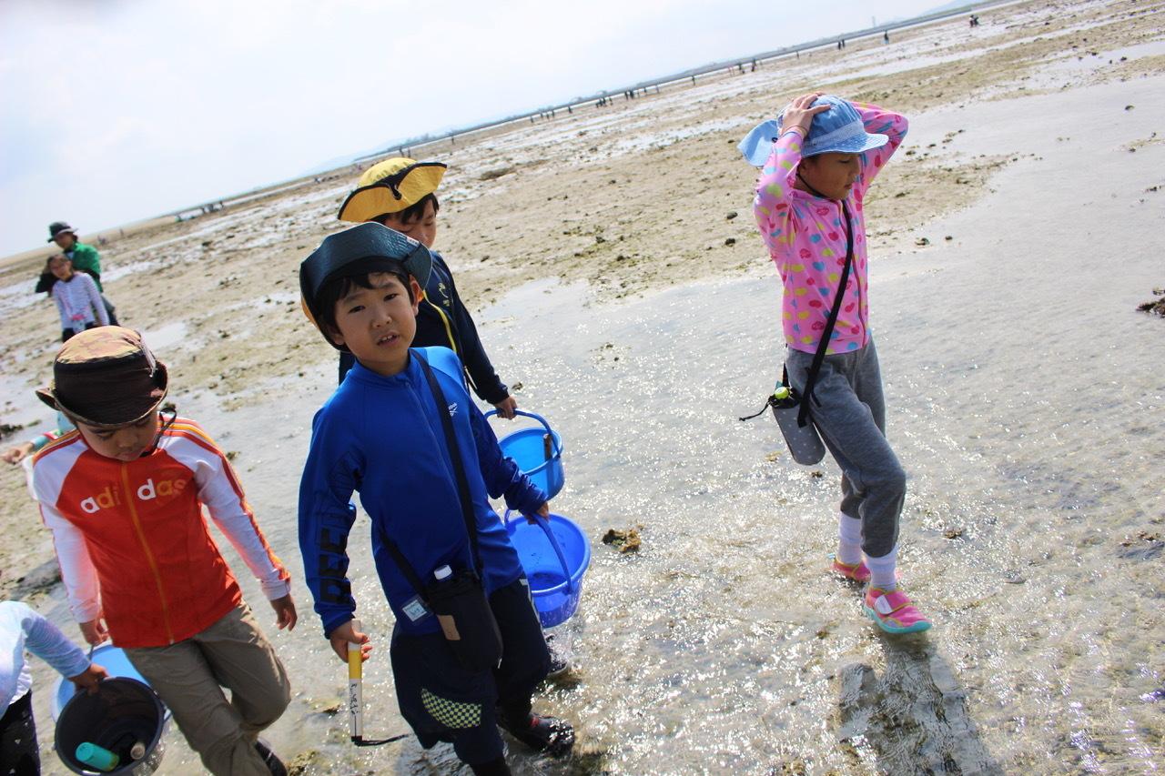 ネコクラブABC合同-06◆秋の干潟で収穫まつり(10/17)沖縄随一の干潟、泡瀬干潟で丸一日潮干狩りにチャレンジ。貝もカニもいっぱいで、お腹いっぱいになりました!_d0363878_00125123.jpeg