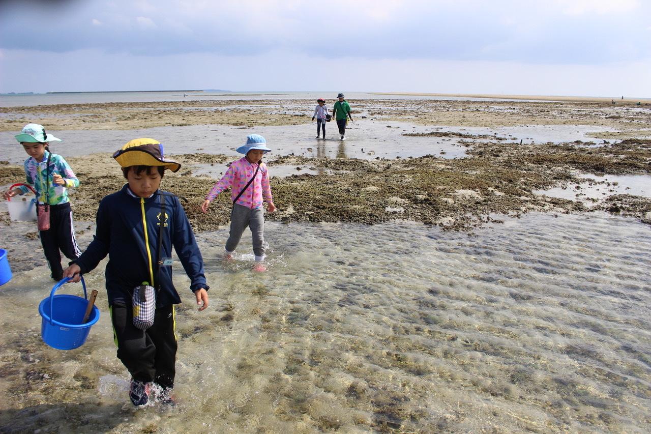 ネコクラブABC合同-06◆秋の干潟で収穫まつり(10/17)沖縄随一の干潟、泡瀬干潟で丸一日潮干狩りにチャレンジ。貝もカニもいっぱいで、お腹いっぱいになりました!_d0363878_00125140.jpeg