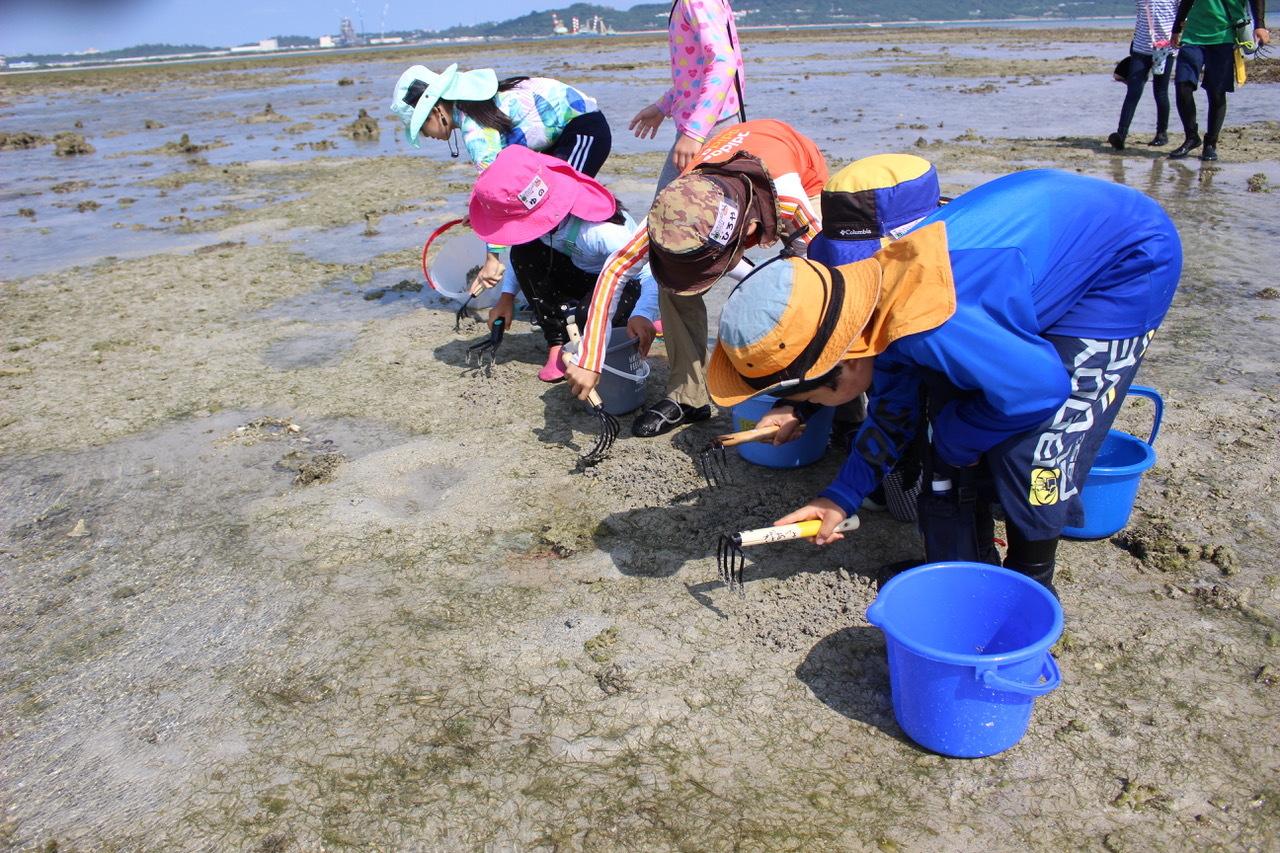 ネコクラブABC合同-06◆秋の干潟で収穫まつり(10/17)沖縄随一の干潟、泡瀬干潟で丸一日潮干狩りにチャレンジ。貝もカニもいっぱいで、お腹いっぱいになりました!_d0363878_00125191.jpeg
