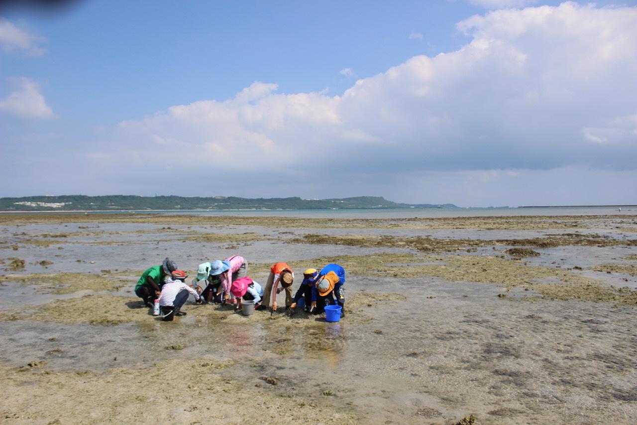 ネコクラブABC合同-06◆秋の干潟で収穫まつり(10/17)沖縄随一の干潟、泡瀬干潟で丸一日潮干狩りにチャレンジ。貝もカニもいっぱいで、お腹いっぱいになりました!_d0363878_00125192.jpeg