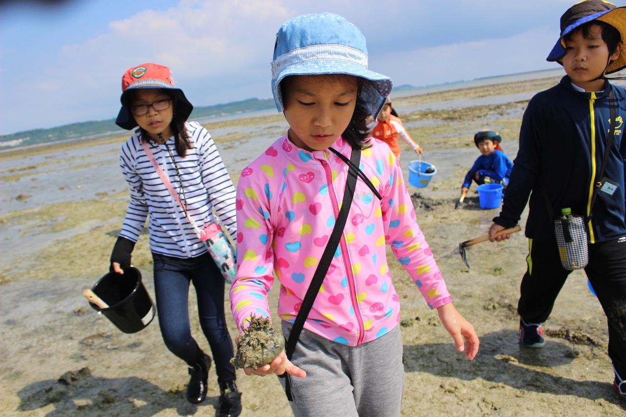 ネコクラブABC合同-06◆秋の干潟で収穫まつり(10/17)沖縄随一の干潟、泡瀬干潟で丸一日潮干狩りにチャレンジ。貝もカニもいっぱいで、お腹いっぱいになりました!_d0363878_00125222.jpeg