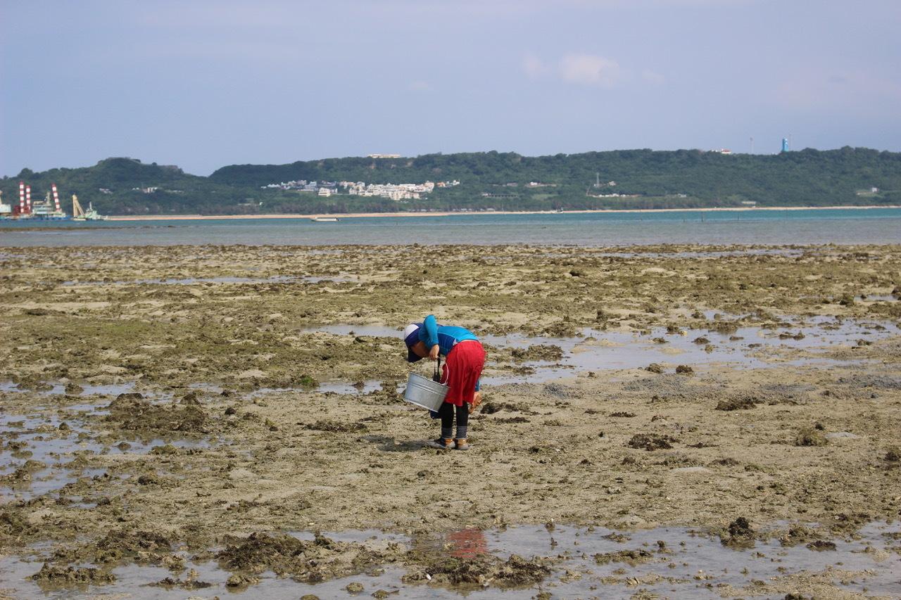 ネコクラブABC合同-06◆秋の干潟で収穫まつり(10/17)沖縄随一の干潟、泡瀬干潟で丸一日潮干狩りにチャレンジ。貝もカニもいっぱいで、お腹いっぱいになりました!_d0363878_00130504.jpeg