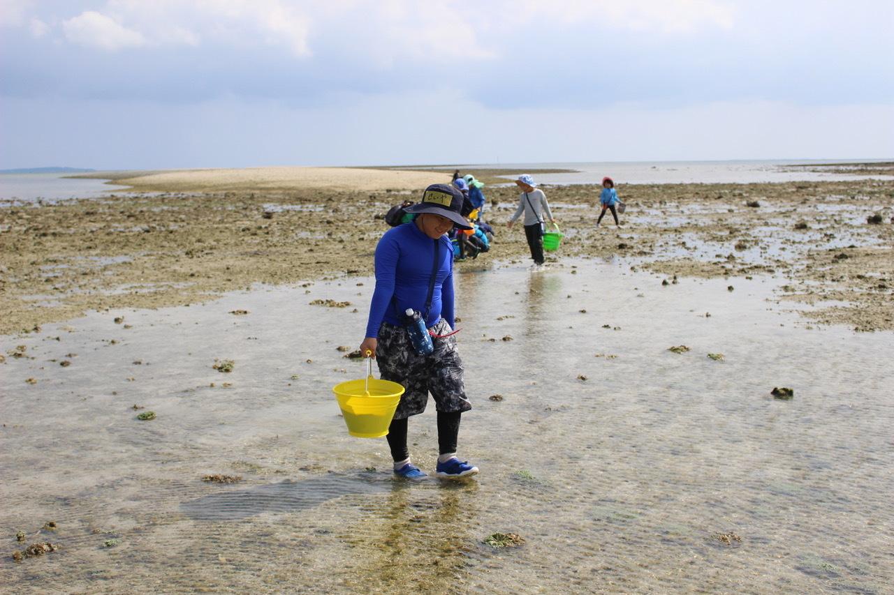 ネコクラブABC合同-06◆秋の干潟で収穫まつり(10/17)沖縄随一の干潟、泡瀬干潟で丸一日潮干狩りにチャレンジ。貝もカニもいっぱいで、お腹いっぱいになりました!_d0363878_00130527.jpeg
