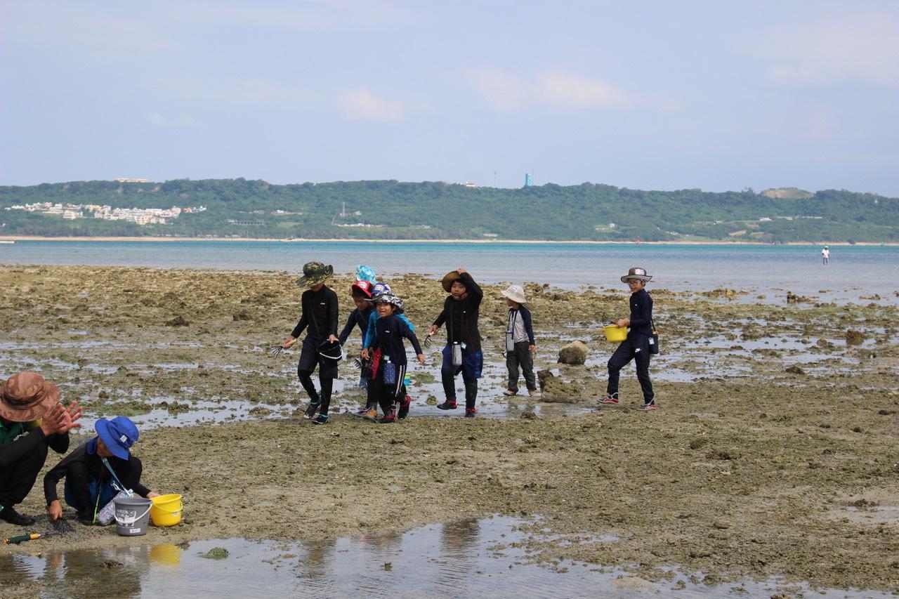 ネコクラブABC合同-06◆秋の干潟で収穫まつり(10/17)沖縄随一の干潟、泡瀬干潟で丸一日潮干狩りにチャレンジ。貝もカニもいっぱいで、お腹いっぱいになりました!_d0363878_00132150.jpeg