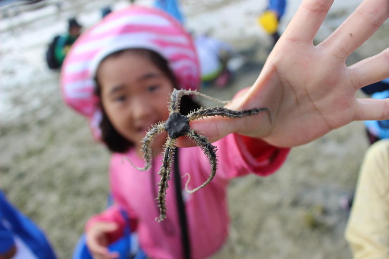 ネコクラブABC合同-06◆秋の干潟で収穫まつり(10/17)沖縄随一の干潟、泡瀬干潟で丸一日潮干狩りにチャレンジ。貝もカニもいっぱいで、お腹いっぱいになりました!_d0363878_00132156.jpeg