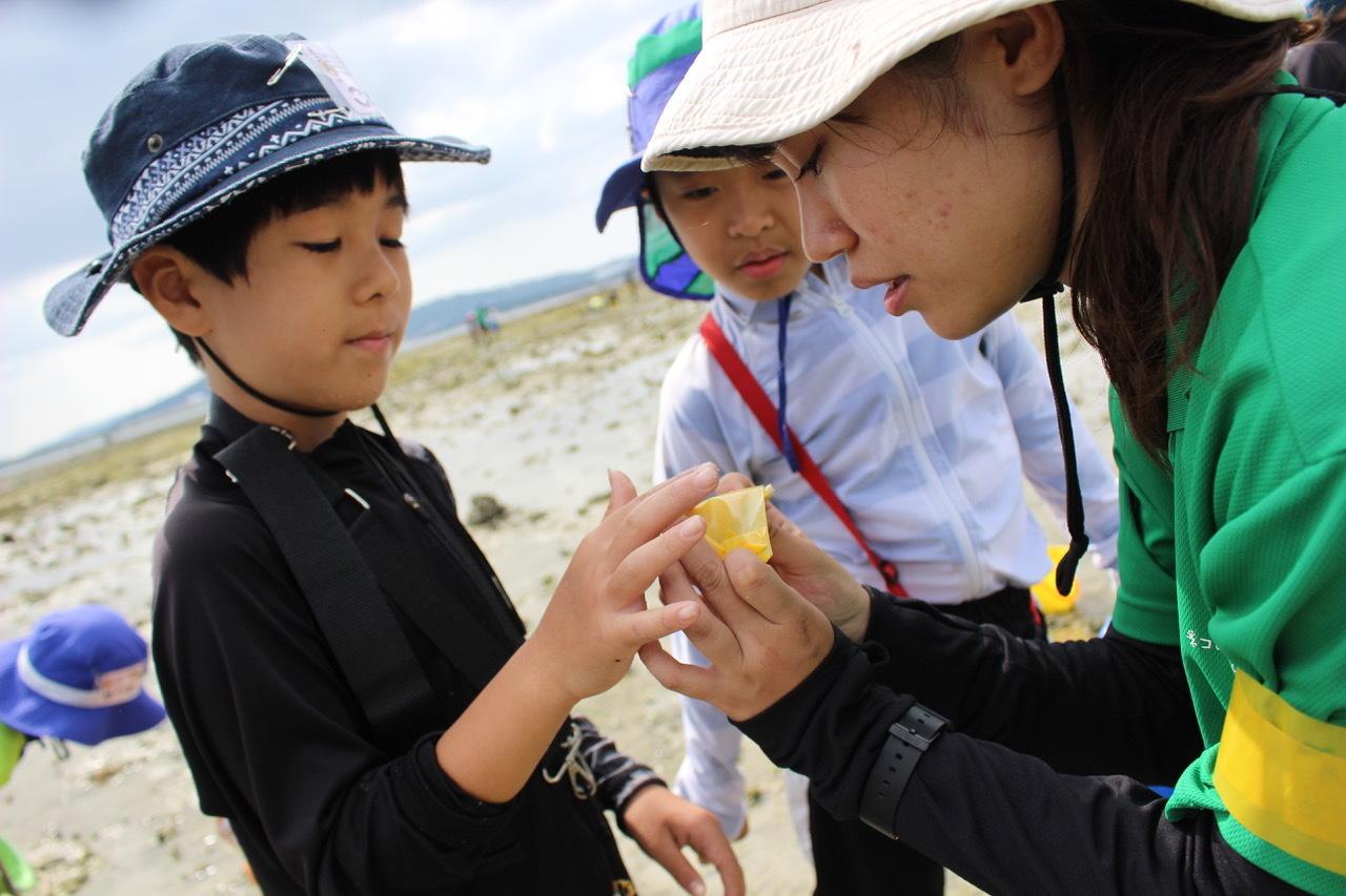 ネコクラブABC合同-06◆秋の干潟で収穫まつり(10/17)沖縄随一の干潟、泡瀬干潟で丸一日潮干狩りにチャレンジ。貝もカニもいっぱいで、お腹いっぱいになりました!_d0363878_00133599.jpeg