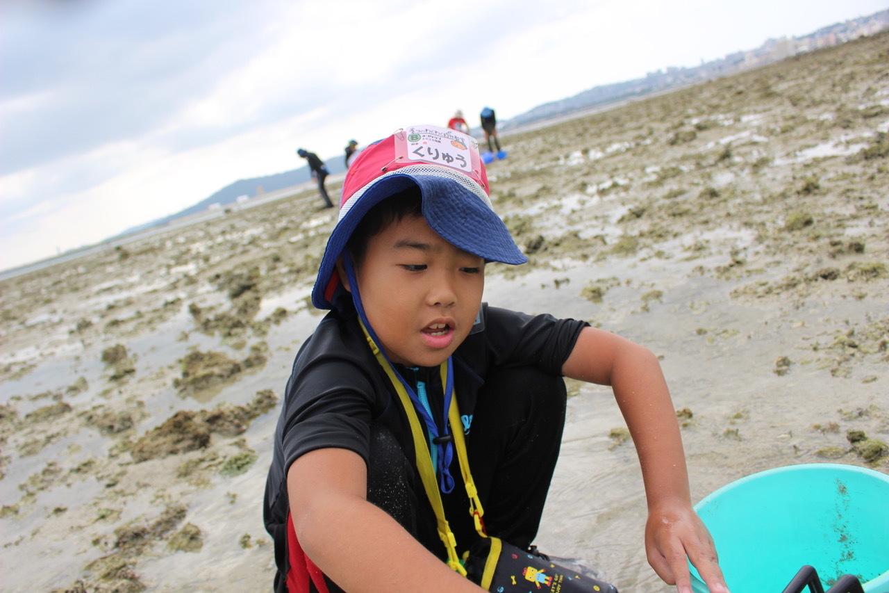 ネコクラブABC合同-06◆秋の干潟で収穫まつり(10/17)沖縄随一の干潟、泡瀬干潟で丸一日潮干狩りにチャレンジ。貝もカニもいっぱいで、お腹いっぱいになりました!_d0363878_00135138.jpeg