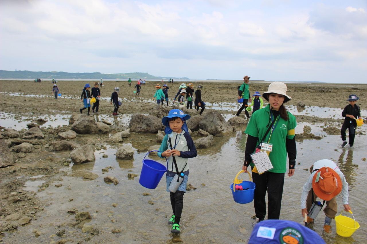 ネコクラブABC合同-06◆秋の干潟で収穫まつり(10/17)沖縄随一の干潟、泡瀬干潟で丸一日潮干狩りにチャレンジ。貝もカニもいっぱいで、お腹いっぱいになりました!_d0363878_00140412.jpeg