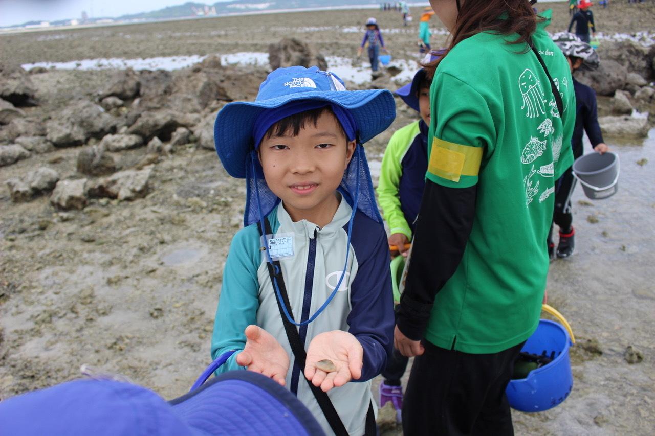 ネコクラブABC合同-06◆秋の干潟で収穫まつり(10/17)沖縄随一の干潟、泡瀬干潟で丸一日潮干狩りにチャレンジ。貝もカニもいっぱいで、お腹いっぱいになりました!_d0363878_00140429.jpeg