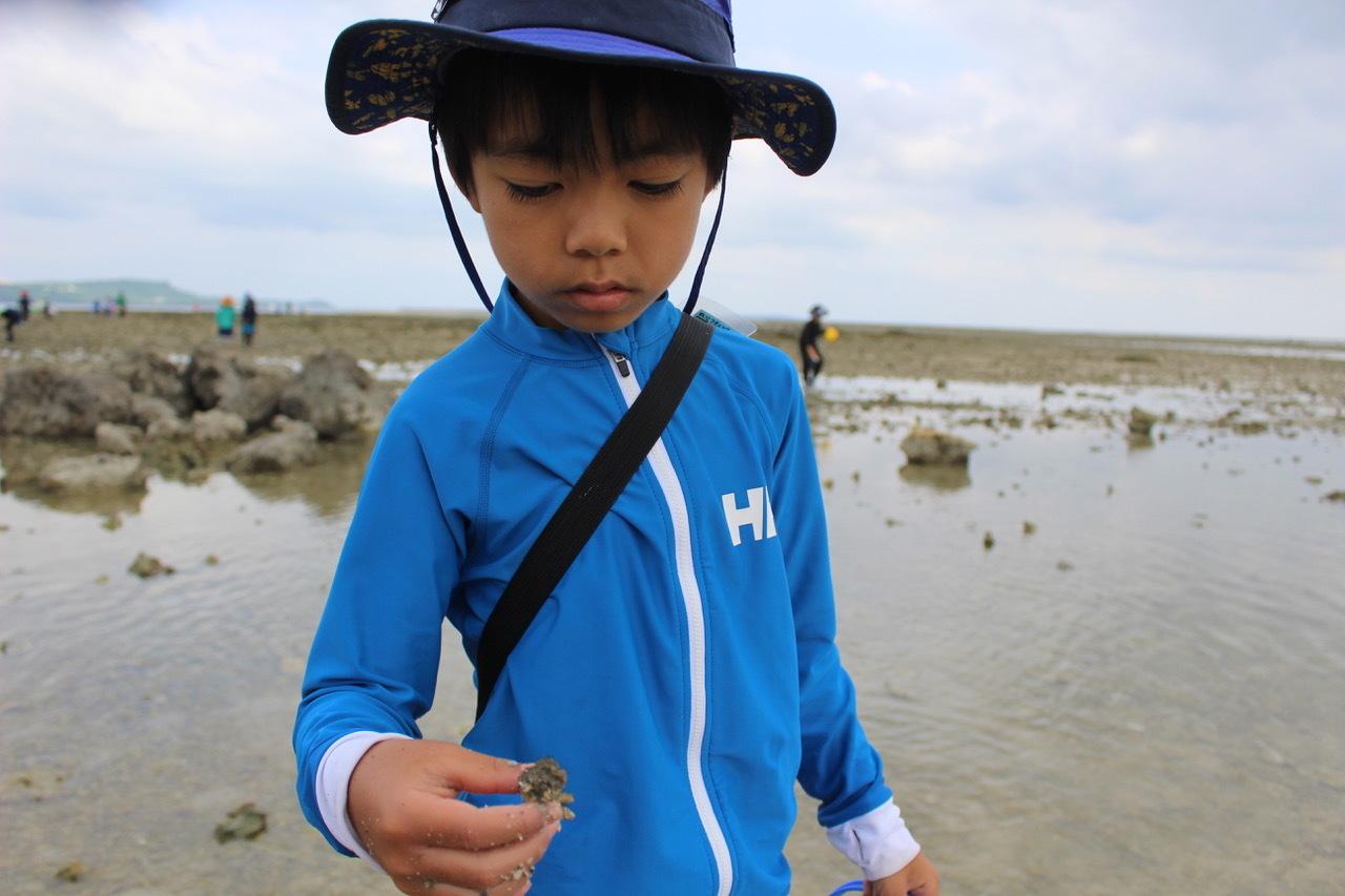 ネコクラブABC合同-06◆秋の干潟で収穫まつり(10/17)沖縄随一の干潟、泡瀬干潟で丸一日潮干狩りにチャレンジ。貝もカニもいっぱいで、お腹いっぱいになりました!_d0363878_00140442.jpeg