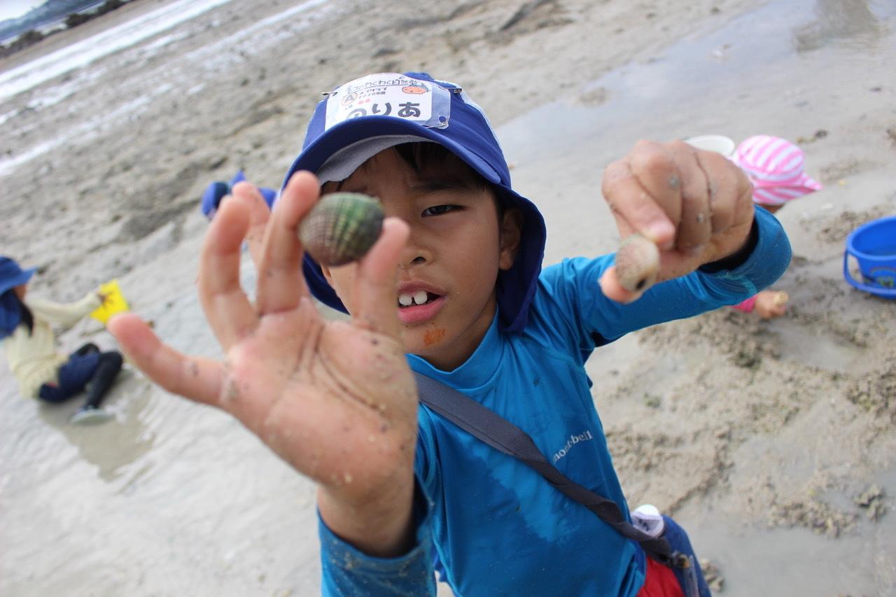 ネコクラブABC合同-06◆秋の干潟で収穫まつり(10/17)沖縄随一の干潟、泡瀬干潟で丸一日潮干狩りにチャレンジ。貝もカニもいっぱいで、お腹いっぱいになりました!_d0363878_00140453.jpeg