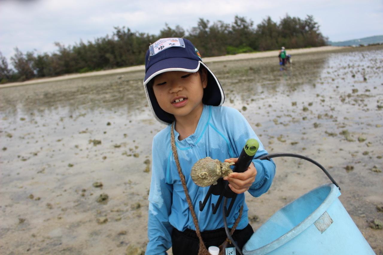 ネコクラブABC合同-06◆秋の干潟で収穫まつり(10/17)沖縄随一の干潟、泡瀬干潟で丸一日潮干狩りにチャレンジ。貝もカニもいっぱいで、お腹いっぱいになりました!_d0363878_00140465.jpeg