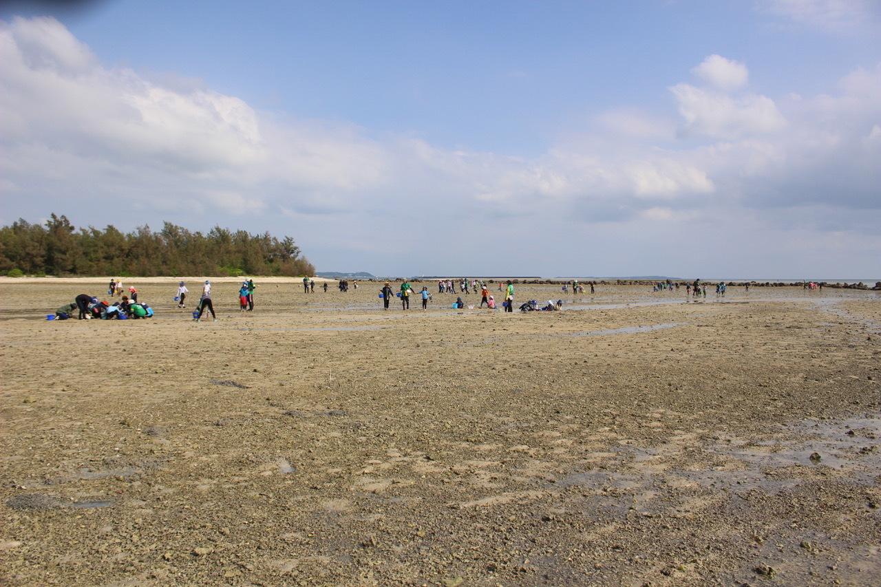 ネコクラブABC合同-06◆秋の干潟で収穫まつり(10/17)沖縄随一の干潟、泡瀬干潟で丸一日潮干狩りにチャレンジ。貝もカニもいっぱいで、お腹いっぱいになりました!_d0363878_00142705.jpeg