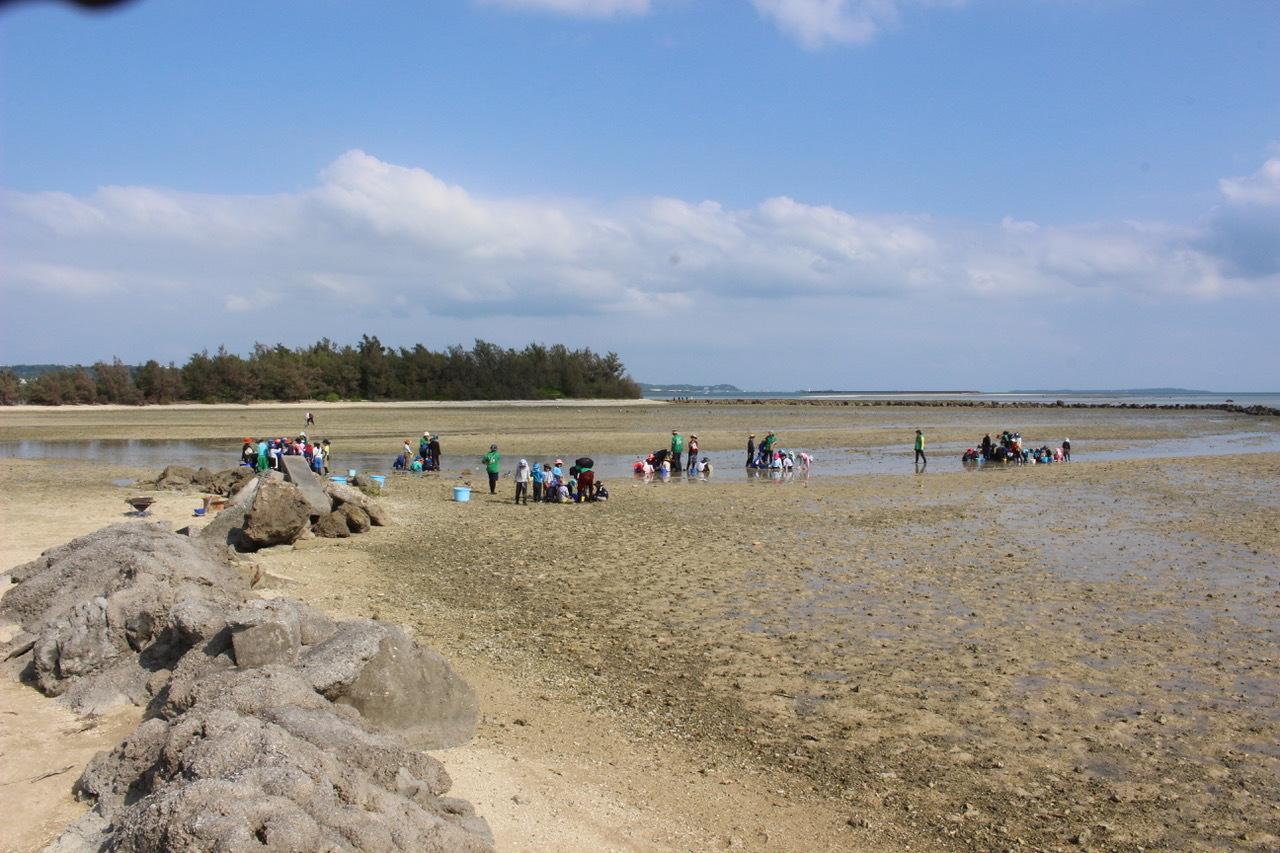 ネコクラブABC合同-06◆秋の干潟で収穫まつり(10/17)沖縄随一の干潟、泡瀬干潟で丸一日潮干狩りにチャレンジ。貝もカニもいっぱいで、お腹いっぱいになりました!_d0363878_00142868.jpeg