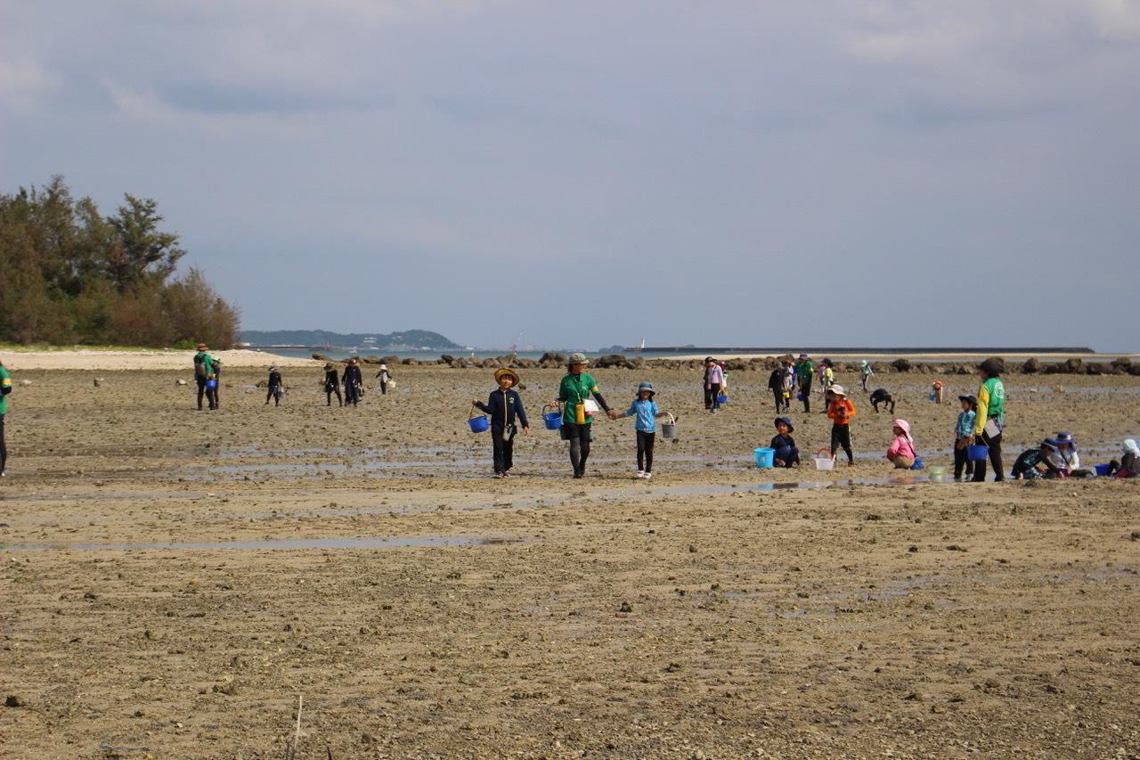 ネコクラブABC合同-06◆秋の干潟で収穫まつり(10/17)沖縄随一の干潟、泡瀬干潟で丸一日潮干狩りにチャレンジ。貝もカニもいっぱいで、お腹いっぱいになりました!_d0363878_00142869.jpeg