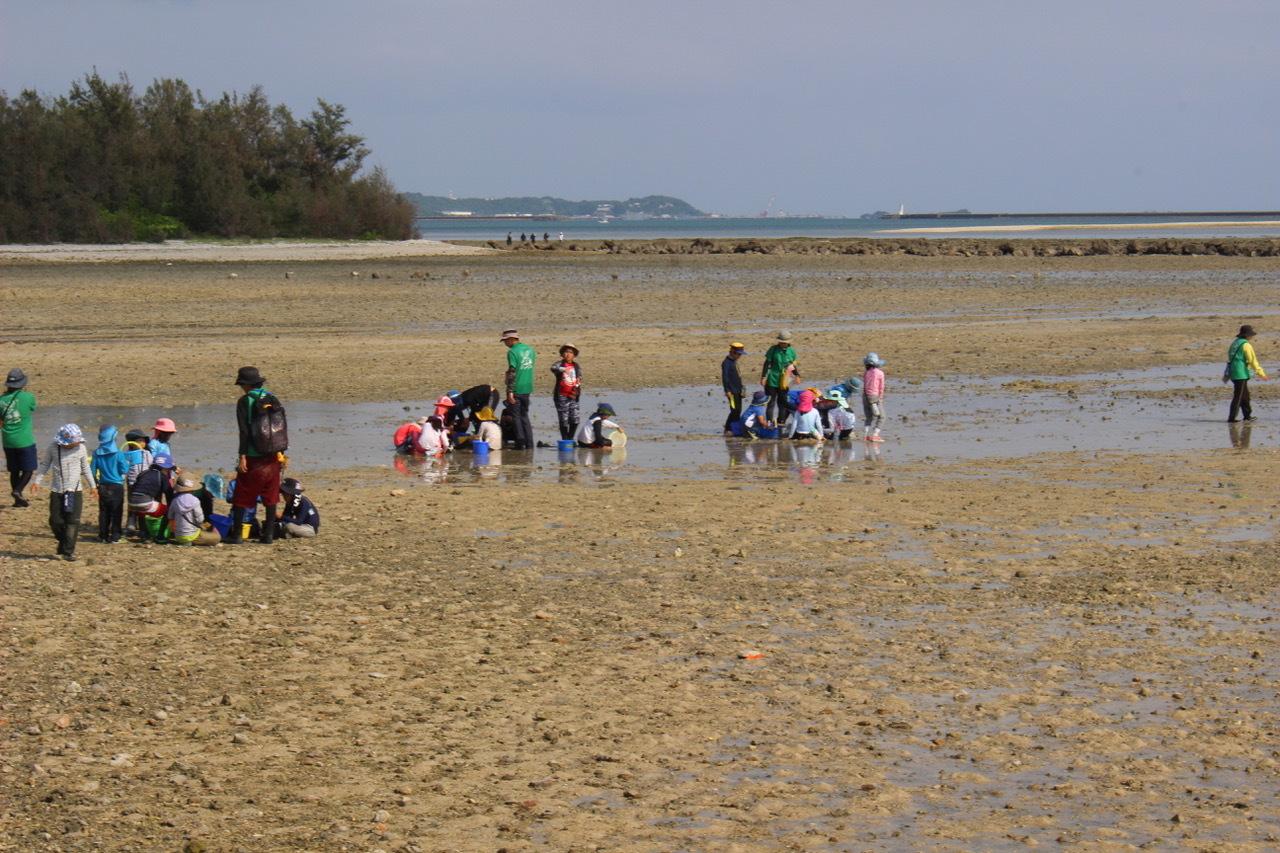 ネコクラブABC合同-06◆秋の干潟で収穫まつり(10/17)沖縄随一の干潟、泡瀬干潟で丸一日潮干狩りにチャレンジ。貝もカニもいっぱいで、お腹いっぱいになりました!_d0363878_00142874.jpeg