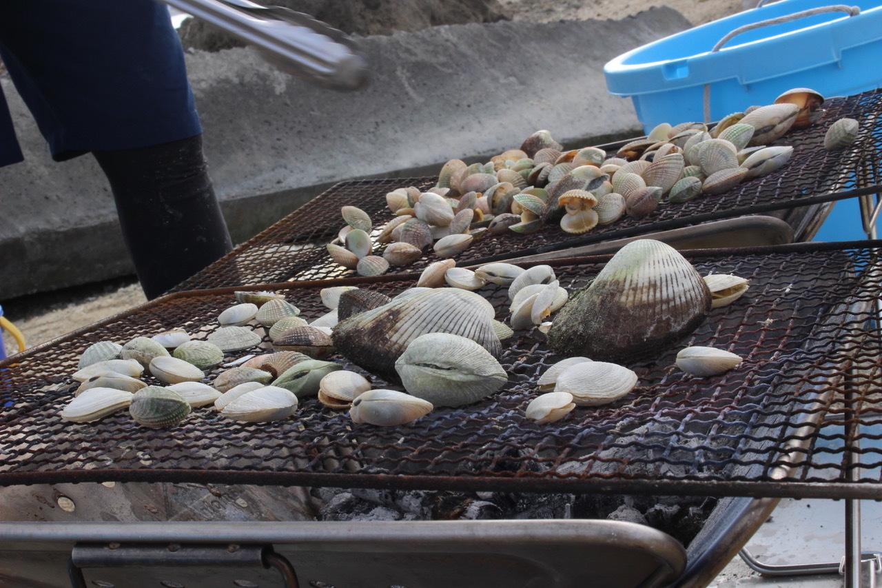 ネコクラブABC合同-06◆秋の干潟で収穫まつり(10/17)沖縄随一の干潟、泡瀬干潟で丸一日潮干狩りにチャレンジ。貝もカニもいっぱいで、お腹いっぱいになりました!_d0363878_00144501.jpeg