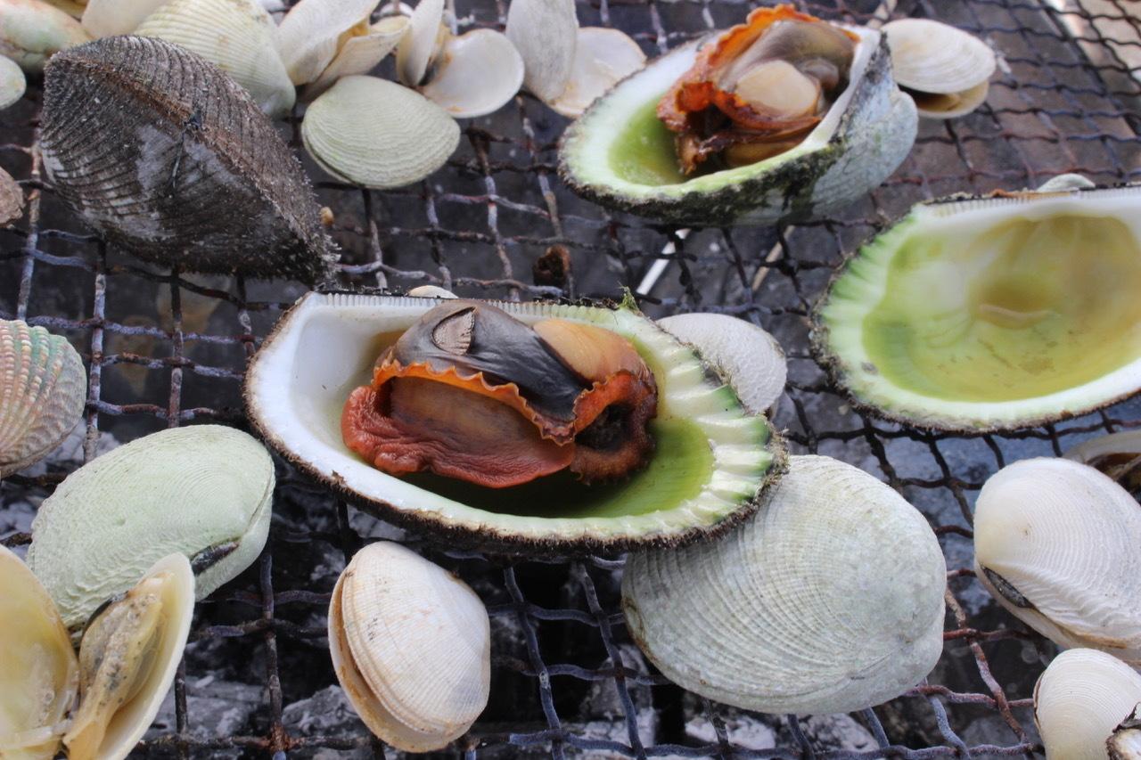 ネコクラブABC合同-06◆秋の干潟で収穫まつり(10/17)沖縄随一の干潟、泡瀬干潟で丸一日潮干狩りにチャレンジ。貝もカニもいっぱいで、お腹いっぱいになりました!_d0363878_00144623.jpeg