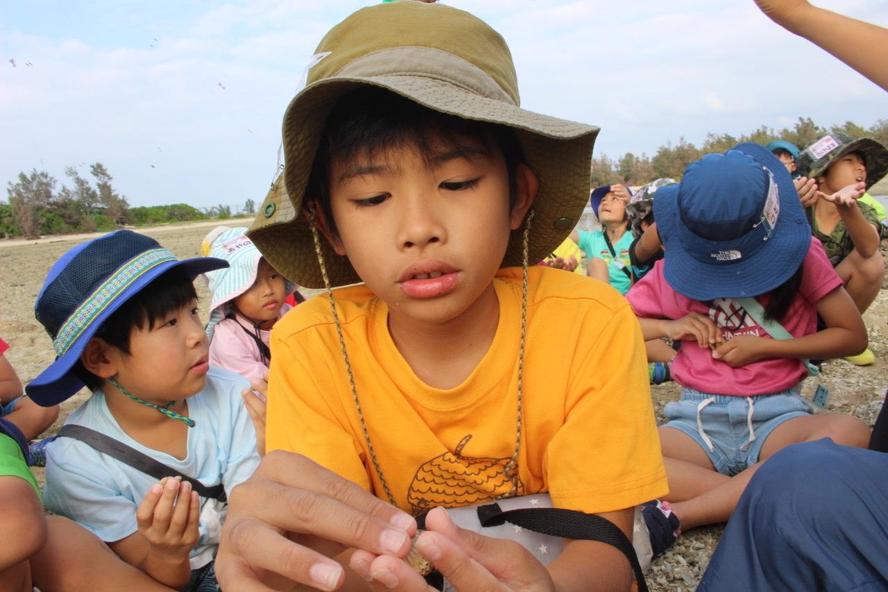 ネコクラブABC合同-06◆秋の干潟で収穫まつり(10/17)沖縄随一の干潟、泡瀬干潟で丸一日潮干狩りにチャレンジ。貝もカニもいっぱいで、お腹いっぱいになりました!_d0363878_00145970.jpeg