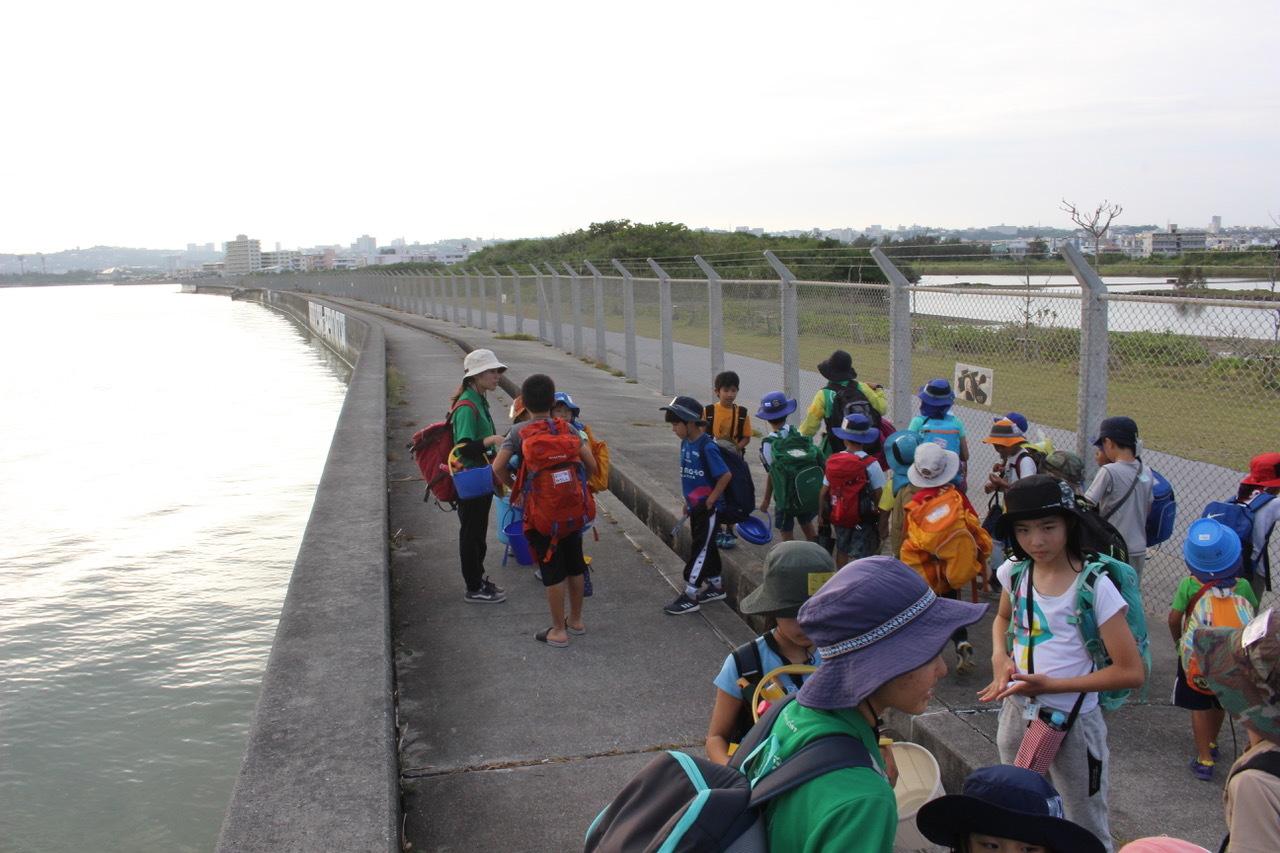 ネコクラブABC合同-06◆秋の干潟で収穫まつり(10/17)沖縄随一の干潟、泡瀬干潟で丸一日潮干狩りにチャレンジ。貝もカニもいっぱいで、お腹いっぱいになりました!_d0363878_00151005.jpeg