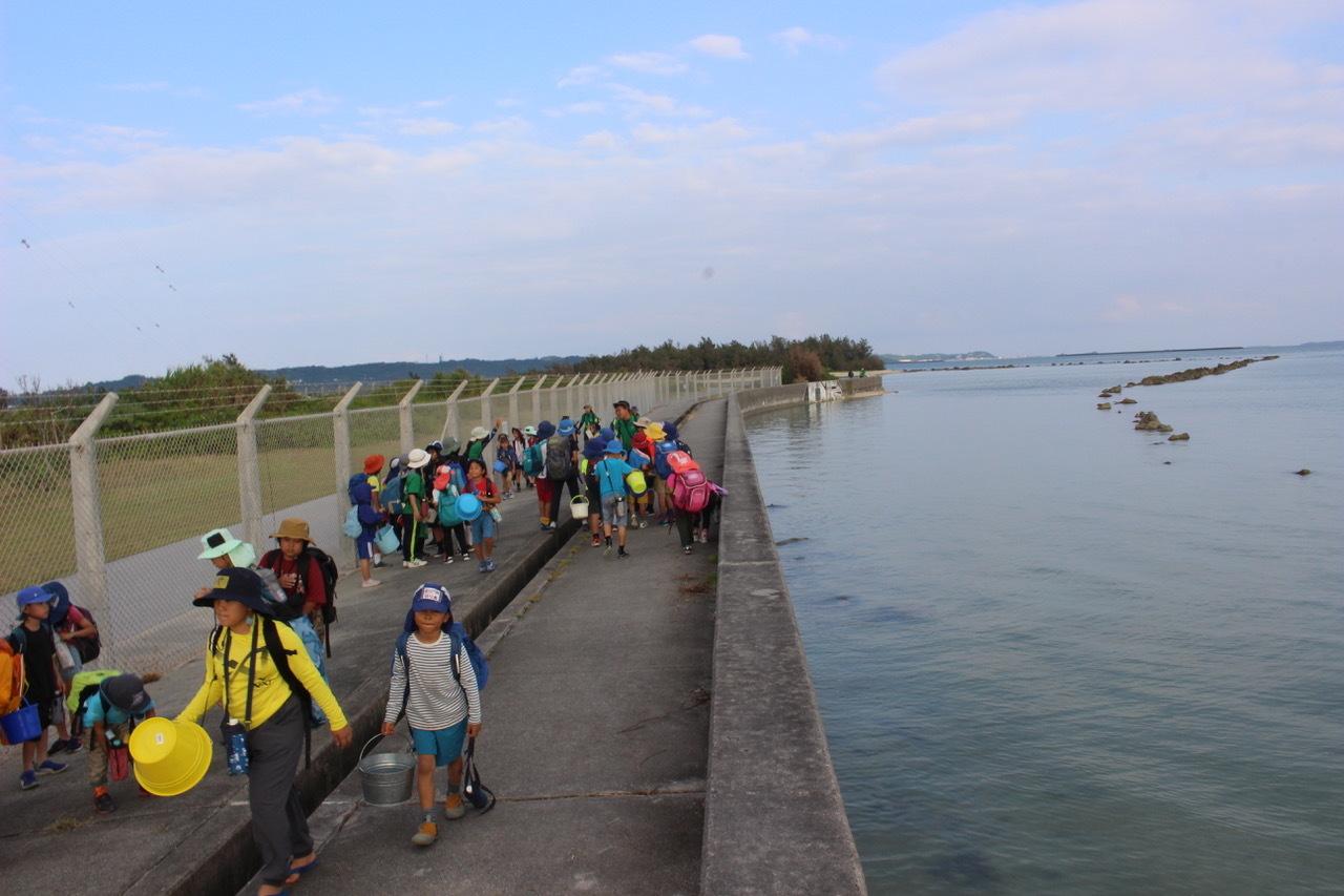 ネコクラブABC合同-06◆秋の干潟で収穫まつり(10/17)沖縄随一の干潟、泡瀬干潟で丸一日潮干狩りにチャレンジ。貝もカニもいっぱいで、お腹いっぱいになりました!_d0363878_00151039.jpeg