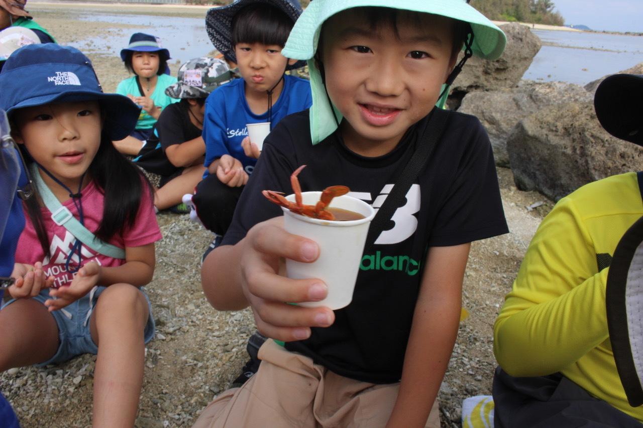 ネコクラブABC合同-06◆秋の干潟で収穫まつり(10/17)沖縄随一の干潟、泡瀬干潟で丸一日潮干狩りにチャレンジ。貝もカニもいっぱいで、お腹いっぱいになりました!_d0363878_00395346.jpeg