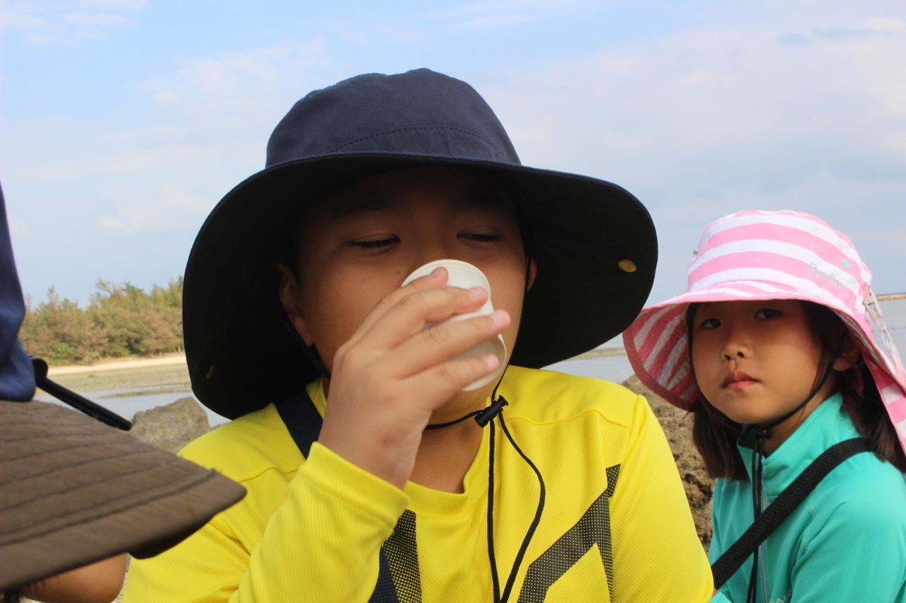 ネコクラブABC合同-06◆秋の干潟で収穫まつり(10/17)沖縄随一の干潟、泡瀬干潟で丸一日潮干狩りにチャレンジ。貝もカニもいっぱいで、お腹いっぱいになりました!_d0363878_00395376.jpeg