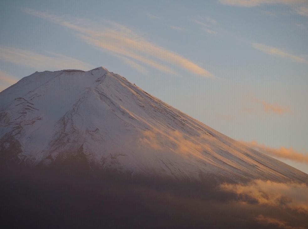 ツルウメモドキと富士山_d0298687_19455227.jpg