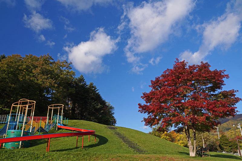 公園巡りの紅葉シリーズ_d0162994_13501463.jpg
