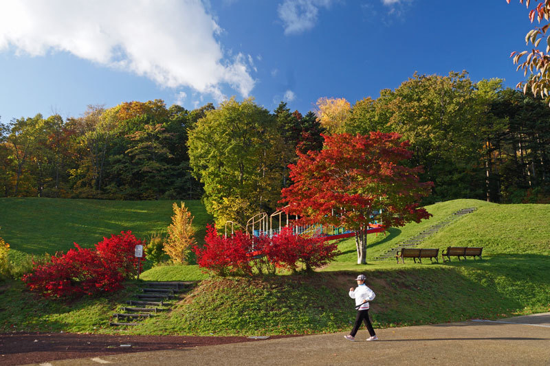 公園巡りの紅葉シリーズ_d0162994_13504295.jpg