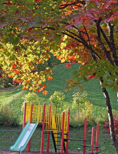 公園巡りの紅葉シリーズ_d0162994_13515540.jpg