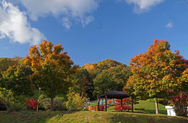 公園巡りの紅葉シリーズ_d0162994_19341201.jpg