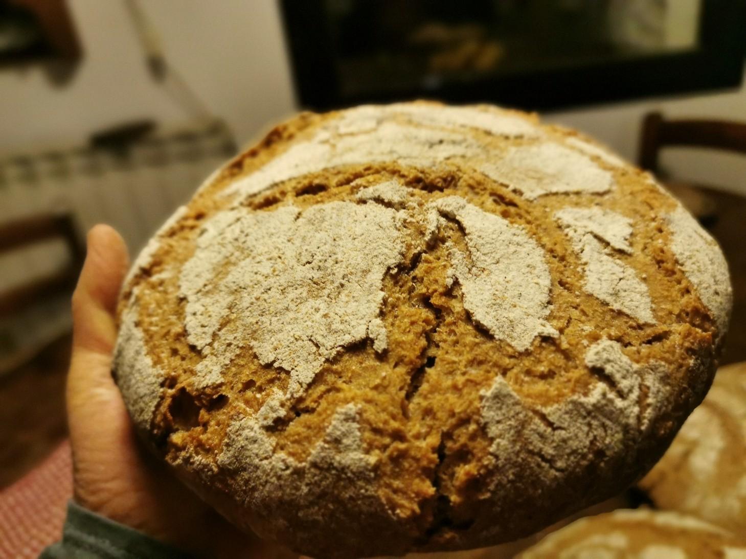 久しぶりに家でパン焼き_f0106597_02190829.jpg